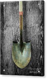 Tools On Wood 15 On Bw Acrylic Print by YoPedro