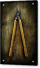 Tools On Wood 34 Acrylic Print by YoPedro