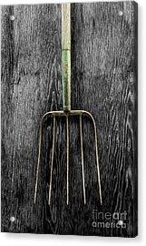 Tools On Wood 7 On Bw Acrylic Print by YoPedro
