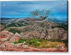 Top Of Mt. Scott Looking West Acrylic Print by Tamyra Ayles