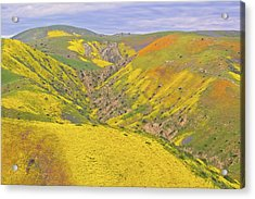 Acrylic Print featuring the photograph Top Of The Temblor Range by Marc Crumpler