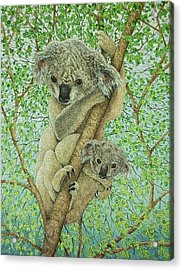 Top Of The Tree Acrylic Print by Pat Scott