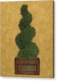 Topiary 2 Acrylic Print by Carol Peck