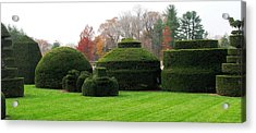 Topiary Garden Acrylic Print by Angela Davies