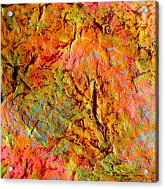 Topographical Map Color Poem Acrylic Print