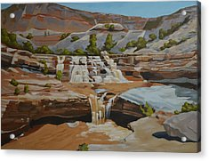 Toquerville Falls Acrylic Print by Nick Froyd