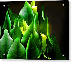 Torches 3 Acrylic Print by Michael Taggart II
