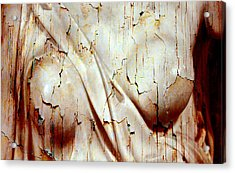 Torn Body Acrylic Print by Munir Alawi