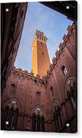 Acrylic Print featuring the photograph Torre Del Mangia Siena Italy by Joan Carroll