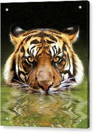 Torrent Acrylic Print by Bill Fleming
