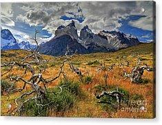 Torres Del Paine 18 Acrylic Print