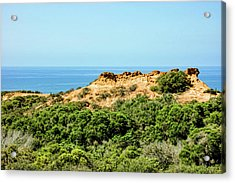 Torrey Pines California - Chaparral On The Coastal Cliffs Acrylic Print
