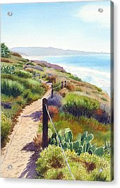 Torrey Pines Guy Fleming Trail Acrylic Print by Mary Helmreich