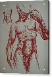 Torso Of  Michelangelo   David  Acrylic Print by Chris  Riley