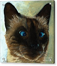 Totally Siamese - Cat Portrait Oil Painting Acrylic Print by Linda Apple