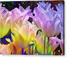 Totally Tulips Two Acrylic Print
