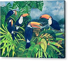 Toucan Talk Acrylic Print by Lisa Graa Jensen