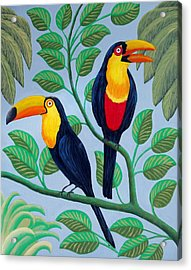 Acrylic Print featuring the painting Toucans by Frederic Kohli