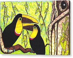 Toucans In Central Park Acrylic Print