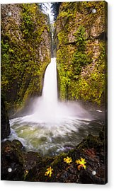 Touch Of Wahclella Acrylic Print