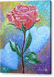 Touched By A Rose Acrylic Print
