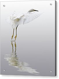 Touching Down Acrylic Print