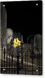 Toujours Souvenu Acrylic Print by Marion Cullen
