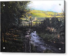 Towards Llanferres Acrylic Print by Harry Robertson