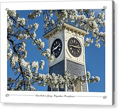 Town Clock In Spring Acrylic Print