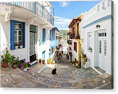 Town Of Skopelos Acrylic Print by Evgeni Dinev