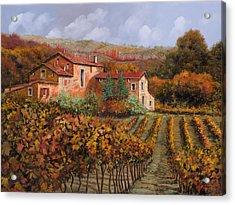 tra le vigne a Montalcino Acrylic Print by Guido Borelli