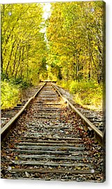Track To Nowhere Acrylic Print