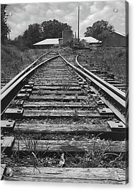 Acrylic Print featuring the photograph Tracks by Mike McGlothlen