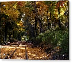 Tracks To Autumn Acrylic Print