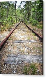 Tracks To Nowhere Acrylic Print by Tim Doubrava