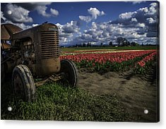 Acrylic Print featuring the photograph Tractor N' Tulips by Ryan Smith