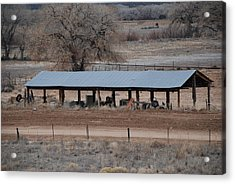 Tractor Port On The Ranch Acrylic Print by Rob Hans