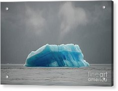 Iceberg - Tracy Arm Fjord Acrylic Print