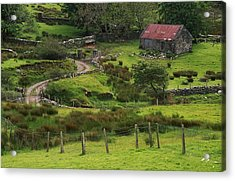 Traditional Cottages, Dan Oharas Acrylic Print