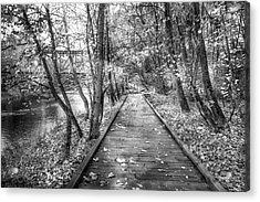 Trail At The River Black And White Acrylic Print