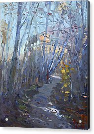 Trail In Silver Creek Valley Acrylic Print