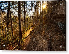 Trail Of Happiness - Blowing Springs Trail Arkansas Acrylic Print