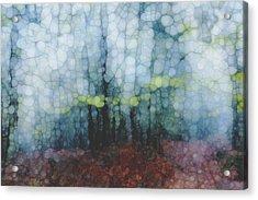 Trail Series 2 Acrylic Print by Jack Zulli