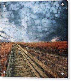 Trail Series 4 Acrylic Print by Jack Zulli