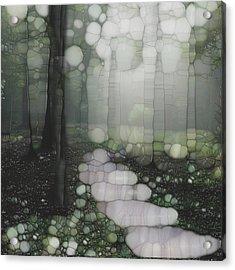 Trail Series 5 Acrylic Print by Jack Zulli
