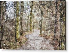 Trail Series Acrylic Print by Jack Zulli