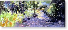 Trail Shadows Acrylic Print