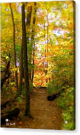 Trailhead Light Acrylic Print