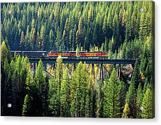Train Coming Through Acrylic Print by Todd Klassy