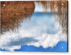 Acrylic Print featuring the photograph Tranquil Illusion by Dee Browning